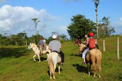 Tour a caballo en Monteverde