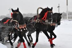 Tour privado de medio día de los suburbios reales de San Petersburgo, incluyendo un paseo a caballo en un trineo ruso tradicional