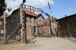 Auschwitz y Museo de Birkenau Visita guiada de Cracovia