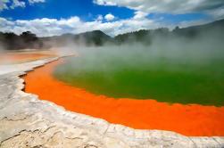 Excursión de día completo de Rotorua Eco Thermal Group