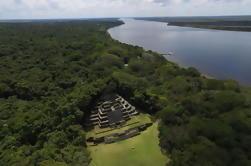 Templo Maya de Lamanai y Encuentro de Babuinos de la Ciudad de Belice