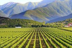 Tbilisi Tour de Vino Privado Día Completo