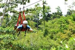 Rain Forest Canopy Tour y Superman Vuelo desde Puerto Viejo o Cahuita