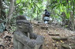 Aventura en la selva de Puerto Viejo Limon: excursión de senderismo, rapel y canopy