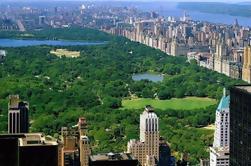 Visita privada a pie de la ciudad de Nueva York