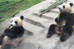 Kung Fu Panda 3 Tour del Templo
