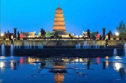 Pagoda privada de ganso salvaje y Tang Paradise Tour