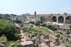 Skip-the-Line Coliseu com acesso especial à Casa de Augusto, Casa di Livia e Monte Palatino