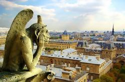 Saltar la línea: Notre Dame y Ile de la Cité Tour privado