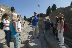 Pompeya y Monte. Excursión de un día al Vesubio desde Nápoles con almuerzo y degustaciones de vinos
