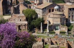 Roma Super Saver: Coliseo más Tour de Degustación de Vinos
