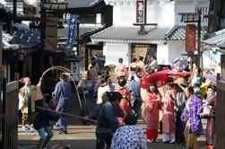 Excursión privada en Taxi a Nikko desde Yokohama