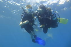 Primera experiencia de buceo en Tenerife con imagen incluida