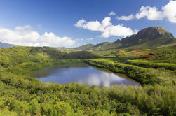 Hidden Valley Falls Kayak y Kauai Hike Aventura