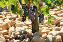 Día completo Cotes du Rhone Wine Tour con degustación de Avignon