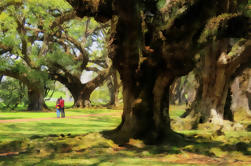 Double Plantation Tour en Nueva Orleans