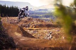 Viaje de media jornada en bicicleta de montaña por Whakarewarewa Redwood Forest
