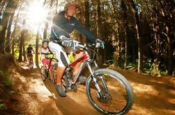 Excursión guiada de 4 horas en bicicleta de montaña de Whakarewarewa Redwood Forest