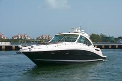 4 horas Carta Privada: 48 'Searay Sundancer Luxury Yacht
