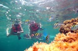 Aventura de Snorkel de medio día en Puerto Morelos