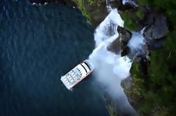 Half-Day Milford Sound Naturaleza Crucero y vuelo de Queenstown
