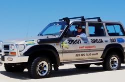 Port Stephens Bush, Excursión de 4x4 para Duna de Playa y Arena