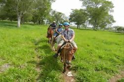 Viaje de día completo en Punta Cana incluyendo paseo a caballo