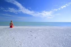 Excursión de 2 días a la Costa Oeste de la Florida: Everglades Park, Golfo de México, Isla Sanibel y Outlet Shopping
