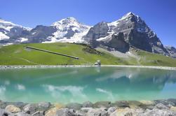 Excursión de un día a los Alpes de Berna Oberland desde Zurich: Kleine Scheidegg y Jungfraujoch Panorama