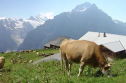 Suiza Campo y Tradiciones Tour