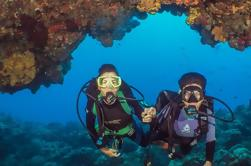 Scuba Diving Tour in Cozumel con Beach Break o S