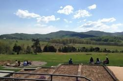 Private Winery Tours in Nelson County