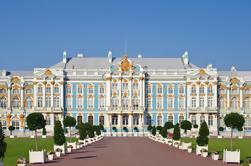 Excursión a la costa de San Petersburgo: Visita a la residencia imperial con el Palacio de Catherine y Peterhof