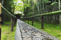 Hidden Kyoto Bike Tour