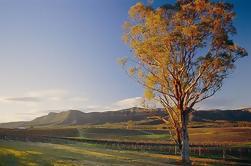 Sidney Combo: Vinícolas Deluxe Hunter Valley e Wilderness Small-Group Tour mais Excursão turística de meio-dia de Sydney