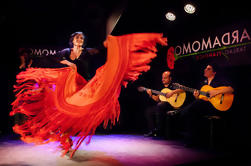 Madrid Flamenco en Wine Tour