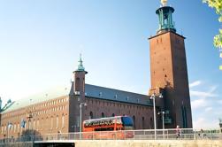 Recorrido panorámico de Estocolmo