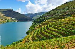 Excursión en grupo en el Valle del Duero con 4 experiencias gastronómicas y 4 degustaciones de vinos