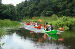 Excursion en bateau du lac Gatun incluant Kayak et déjeuner