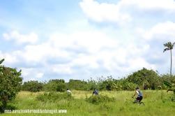 Taal Volcán Bicicleta y Caminata desde Manila