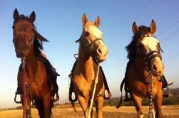 Paseo a caballo una hora Riverbed Trail Ride
