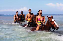 Lo mejor de la experiencia de West Jamaica Island