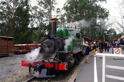 Puffing Billy Train con el desfile de pingüinos opcional o Melbourne City Tour