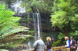 Mt Field National Park y Russell Falls desde Hobart