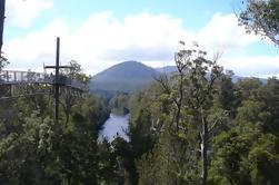 Huon Valley y Tahune Forest Airwalk Tour desde Hobart