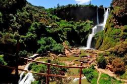 Excursion d'une journée à Ouzoud Waterfalls from Marrakech