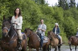 Excursión a caballo por la tarde desde Punta Cana