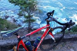 Tour en bicicleta de Puerto Vallarta a El Tuito