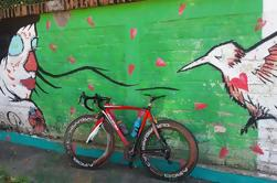 Puerto Vallarta Bike Ride a Punta De Mita