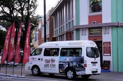 Excursión en autobús Art Deco de Napier